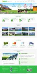 广西凯发能源科技有限公司网站建设案列